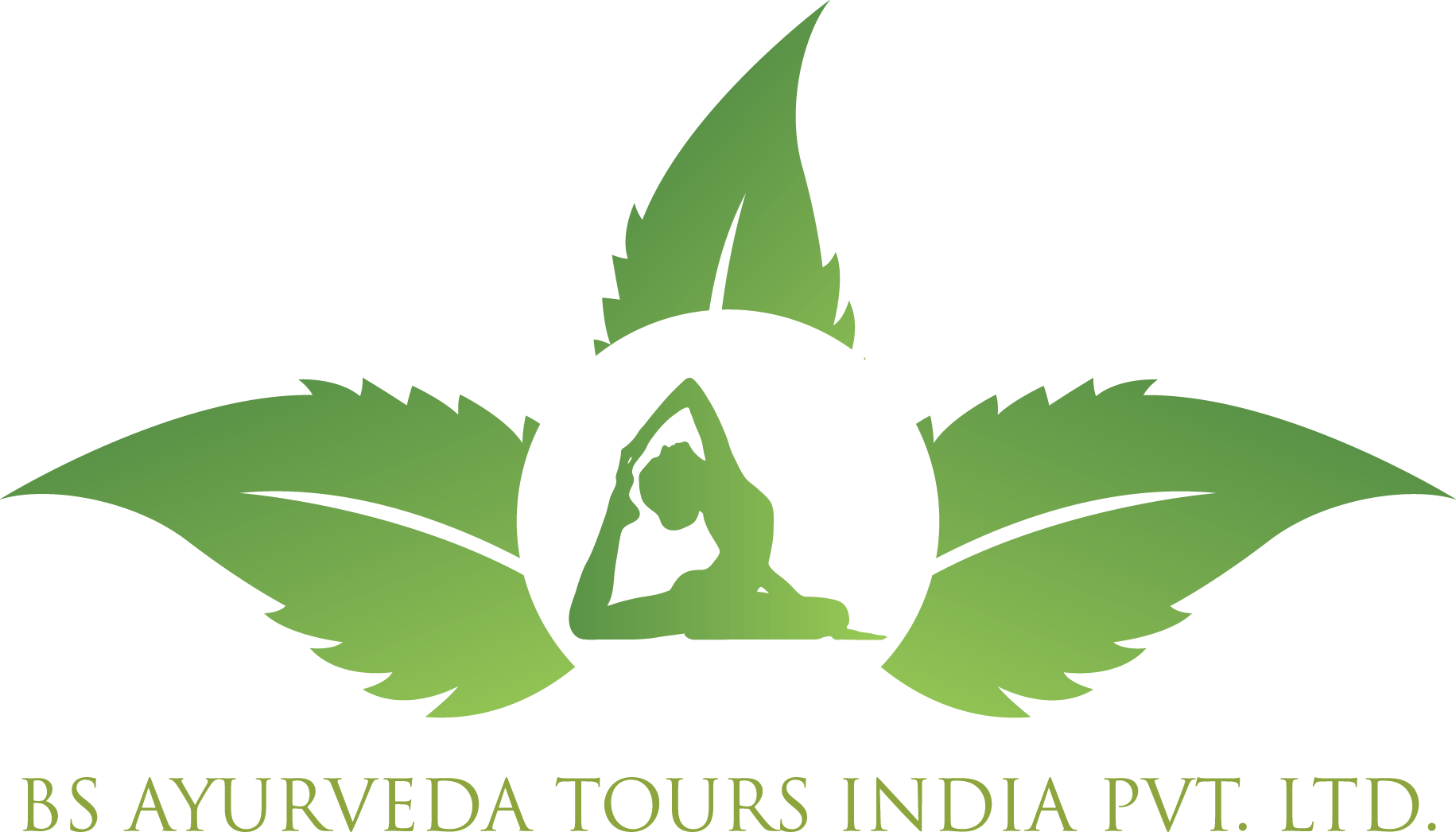 Yoga Teacher Training in India Yoga Training Courses