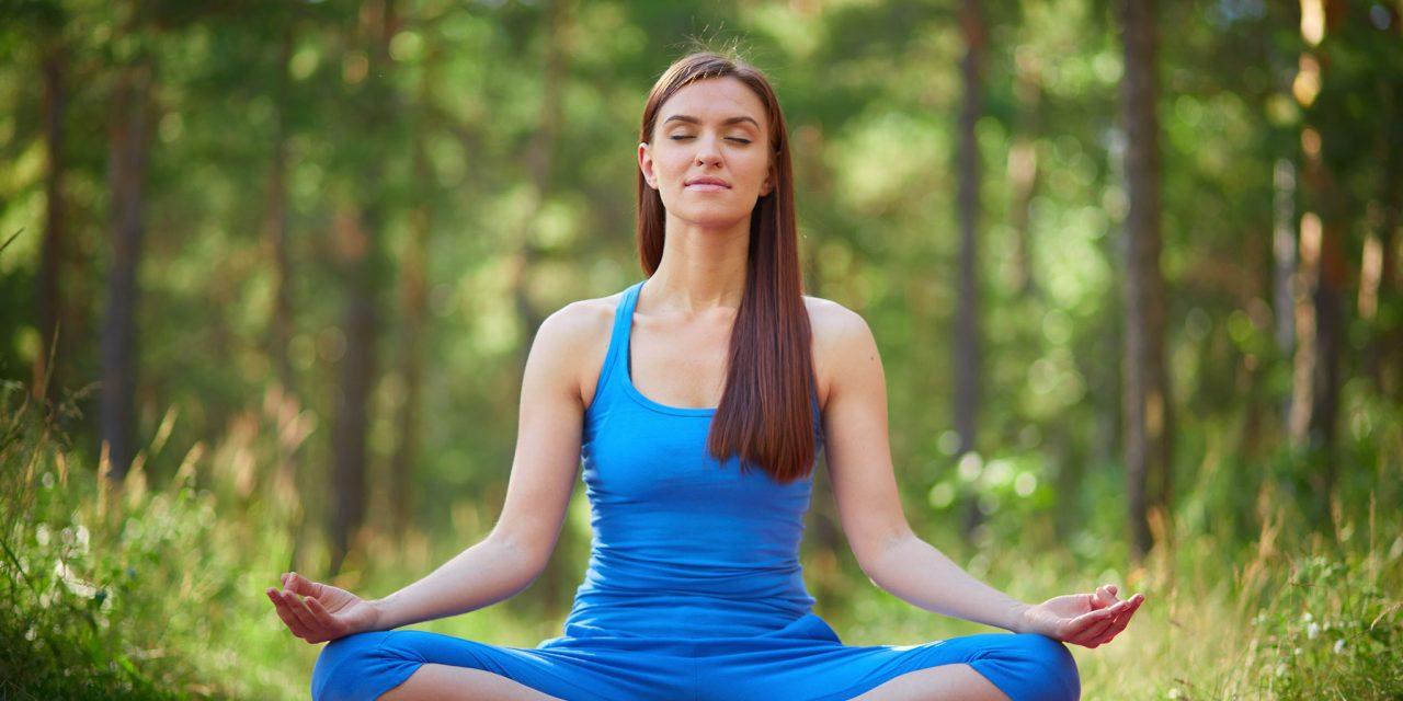 https://www.ayurvedatourindia.com/wp-content/uploads/2019/03/yogaTeacherTrainingInIndia-1280x640.jpg